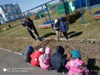 Благоустройство и озеленение территории детского сада